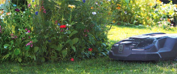 Bienenfreundlicher Automower